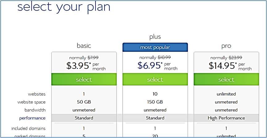 select website hosting plan