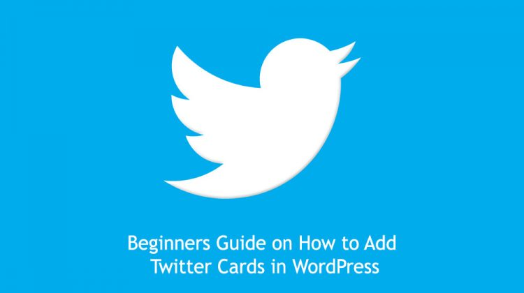 How to add Twitter cards to WordPress